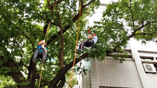 到屏東大學爬樹!