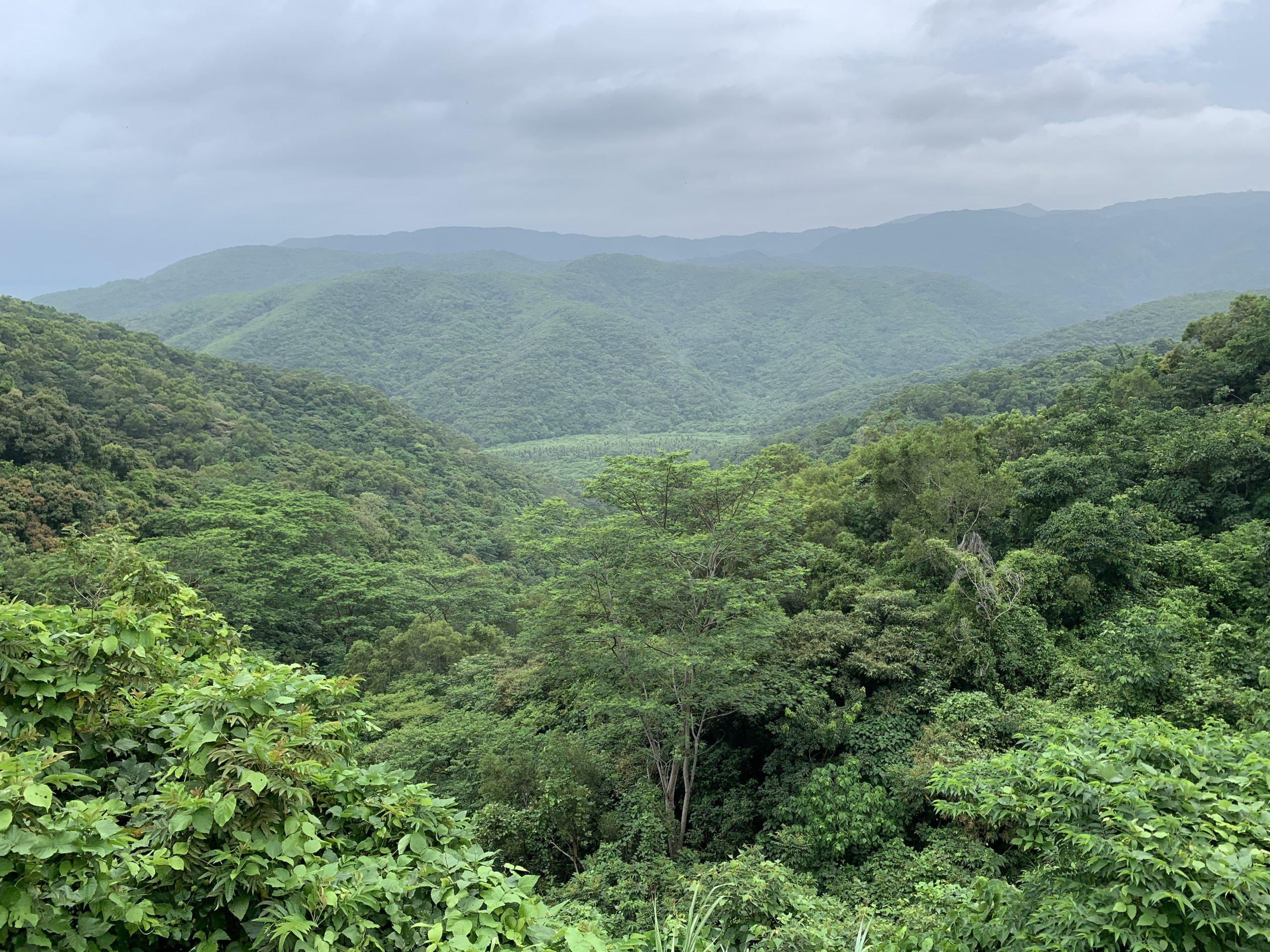 110年度親子一日遊      🍂 嘉義森林樂活之旅 🍂
